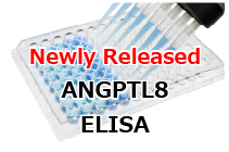 Human ANGPTL8 Assay Kit Newly Released!