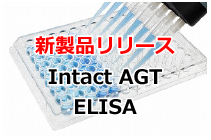 Human Intact Angiotensinogen Assay Kit - IBL 新発売!