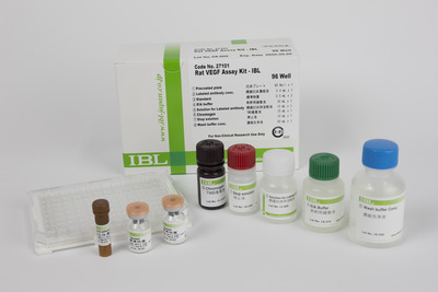 #27101 Rat VEGF Assay Kit - IBL