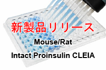 Mouse/Rat Intact Proinsulin CLEIA Kit - IBL 新発売!