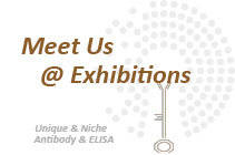 Meet us at exhibition in 2020