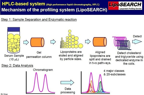 LipoSEARCH - HPLC Based System (Mechanism)