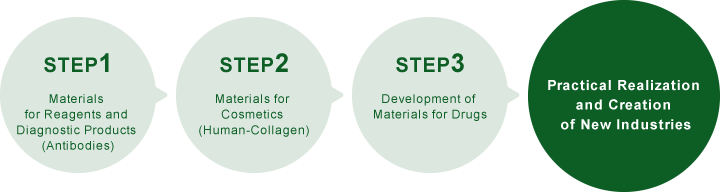 Step 1 Materials for Reagents and Diagnostic Products (Antibodies) → Step 2 Materials for Cosmetics (Human-Collagen) → Step 3 Development of Materials for Drugs